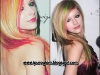 californianas-coloridas-20